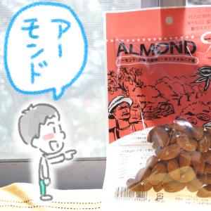 ダイエット中のおやつにアーモンド!筋肉維持だ!(ボディビルダーからの学び)