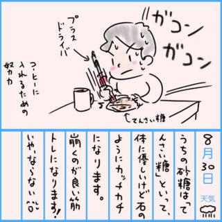 健康日記8/30「てんさい糖」