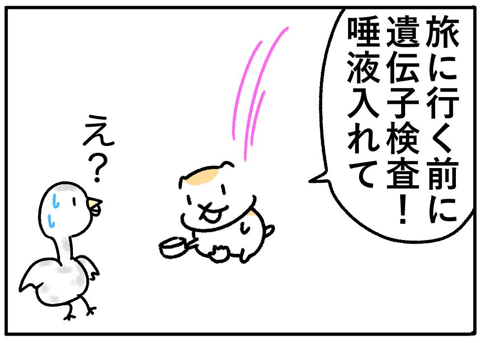 ごるちゃん84話【身近になった遺伝子検査!】の巻