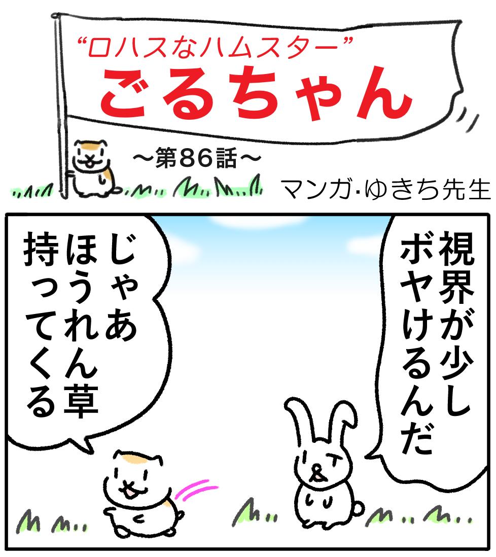 ごるちゃん86話【目のピント機能調節サプリ!】の巻