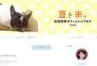 松居直美さんのブログ