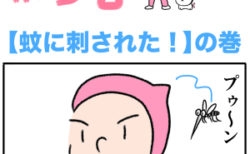 ピンクの忍者ポン吉 第139話【蚊に刺された!】の巻
