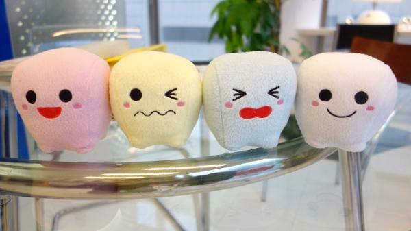 歯の矯正体験
