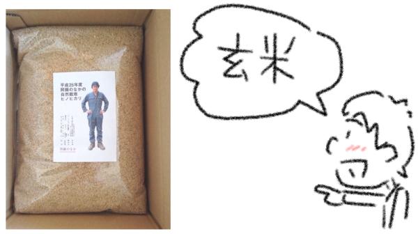 玄米ダイエット日記