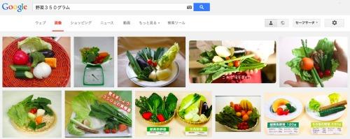 野菜の摂取目安量350グラム