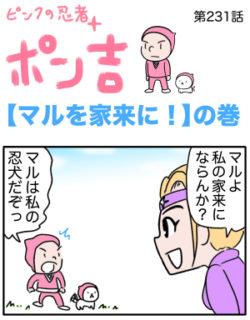 ピンクの忍者ポン吉 第231話【マルを家来に!】の巻