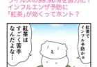 ピンクの忍者ポン吉 第250話【透明人間の術!】の巻