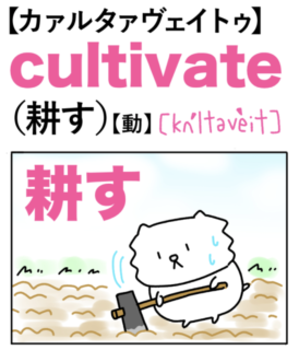 cultivate(耕す)英単語のゴロ合わせ4コマ漫画 Lesson.450