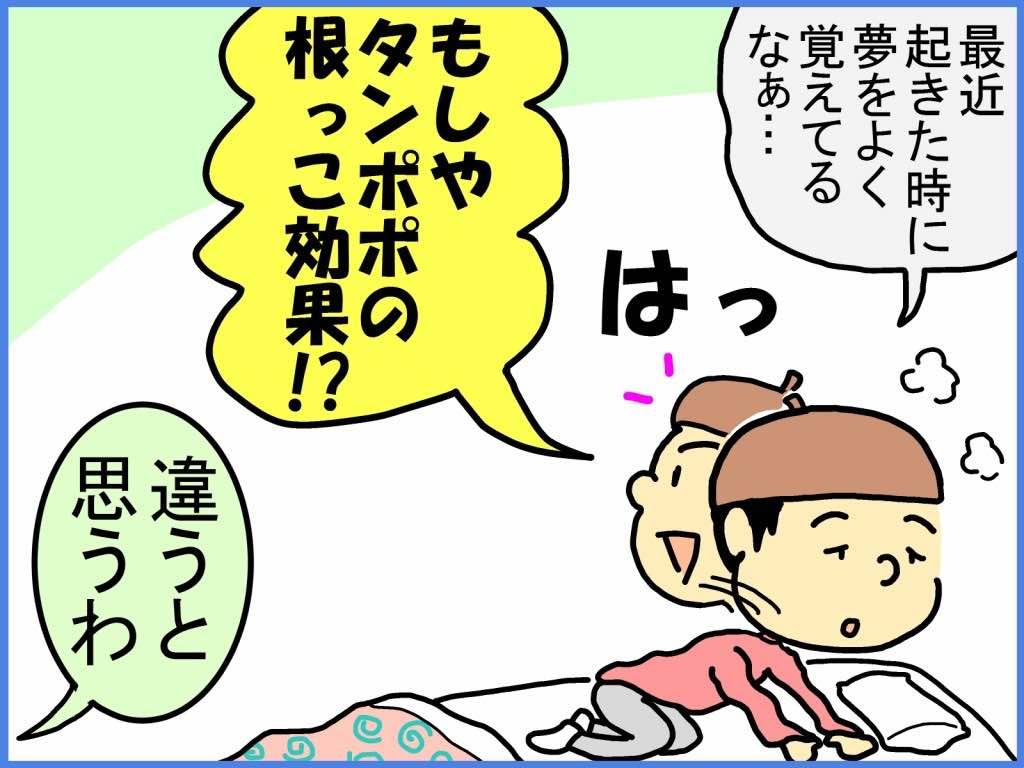 タンポポの利尿作用