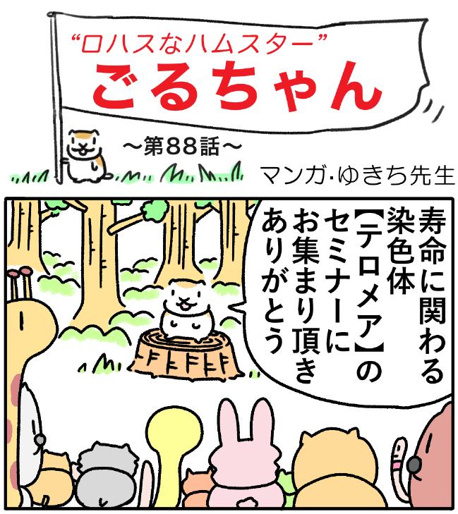 ごるちゃん88話【寿命がのびる??話題のテロメア細胞】の巻