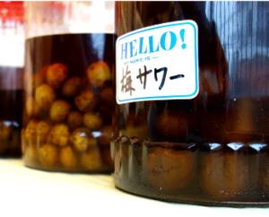 【時期は今!】美味しい自家製梅酒のつくり方。簡単で無農薬な梅酒。