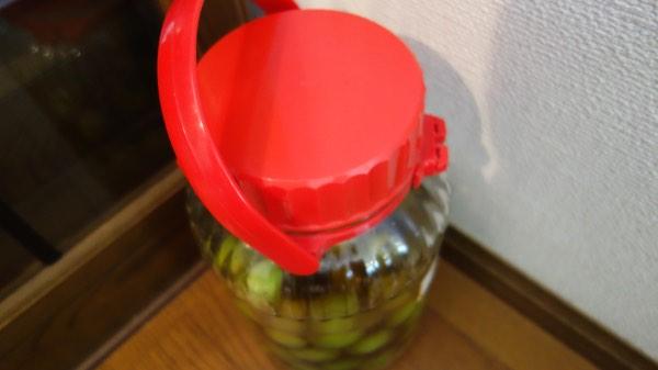 手作り梅酒3