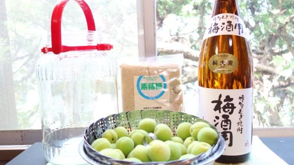 手作り梅酒