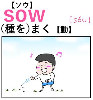sow(種をまく) 英単語のゴロ合わせ4コマ漫画 Lesson.180
