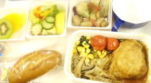 【ベジタリアンあるある⑩】機内食は事前に連絡してベジタリアンにしてもらっちゃう!