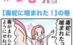 ピンクの忍者ポン吉 第140話【毒蛇に噛まれた!】の巻