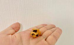 飛行機のベジタリアンミール。のお菓子