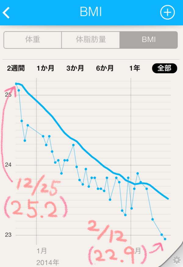 BMIグラフ
