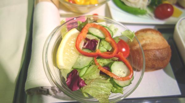 ベジタリアン 機内食