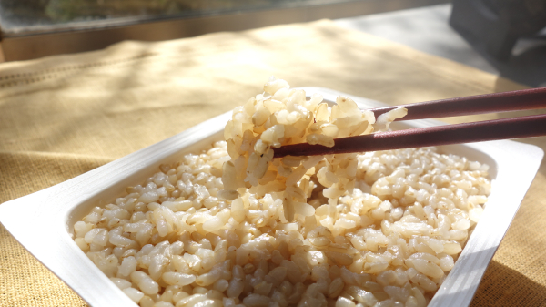 玄米 食べやすい