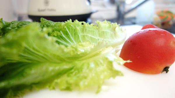 サラダ用の有機トマトとサニーレタス