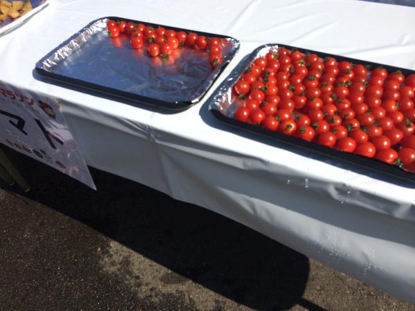 トマトで栄養補給