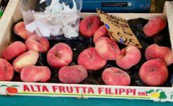 健康日記9/22「イタリアの桃」