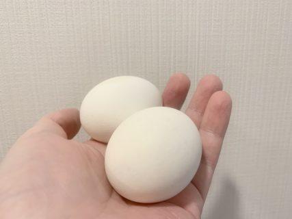 温泉卵を作る日々を送ったり【ふつうの日記】