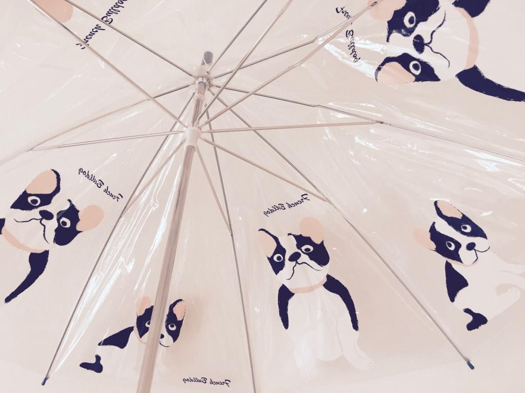 駅で傘を借りたり【普通の日記】