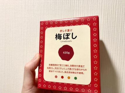 梅干し食べてたり【ふつうの日記】