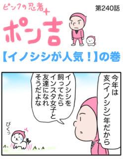ピンクの忍者ポン吉 第240話【イノシシが人気!】の巻