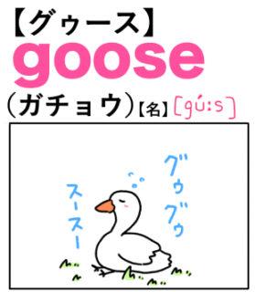 goose(ガチョウ) 英単語のゴロ合わせ4コマ漫画 Lesson.388